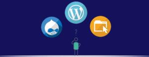 از چه سیستم مدیریت محتوایی برای فروشگاه اینترنتی استفاده کنیم؟