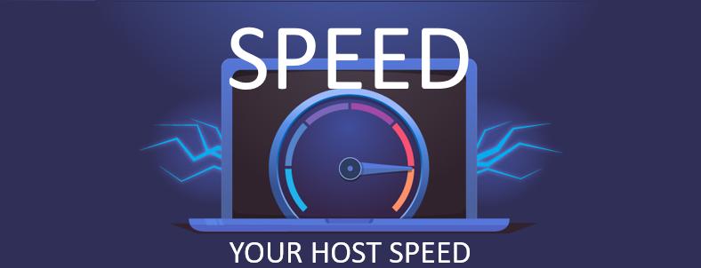 تاثیر سرعت هاست وسروربرسئوی سایت
