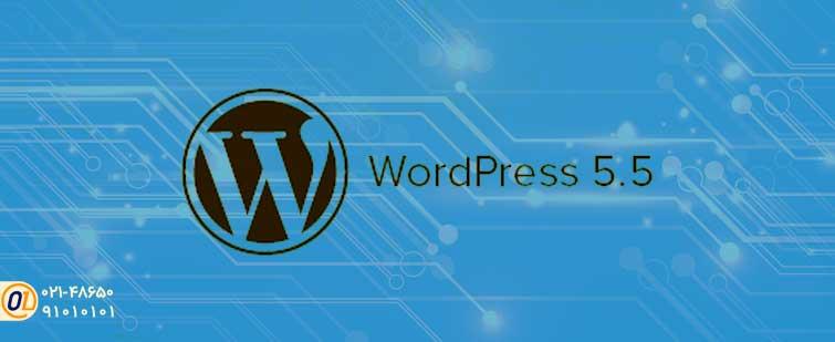 دلیل خرابی WordPress